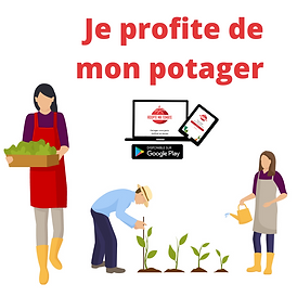 Personnes au potager Application Adopte ma tomate
