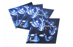 Reflection exhibition brochure