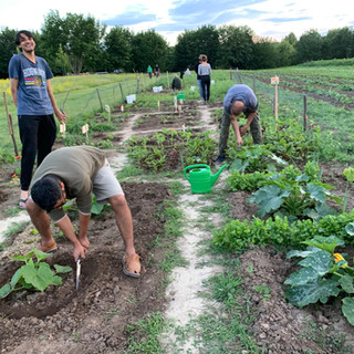 Farmin at its bestJuly 2020-GBG-Archives