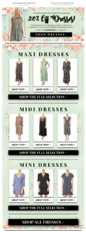 Summer Dress Retail Email