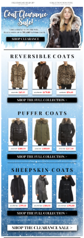 Winter Sale Retail Email