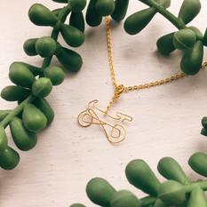 Golden Bicycle.jpg