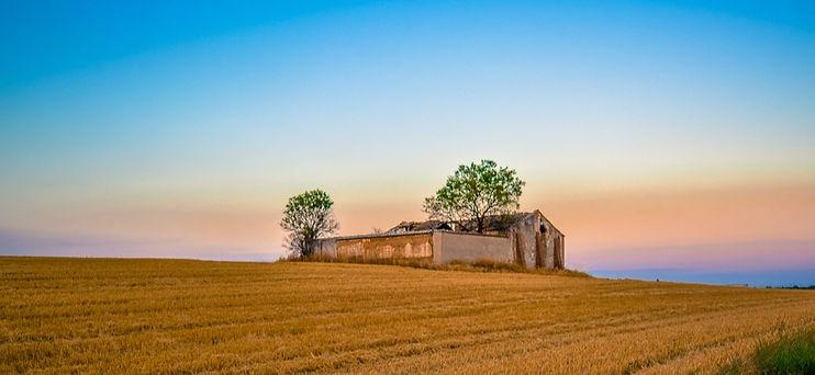 countryside_edited_edited.jpg