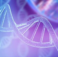 Dangers of Gene Editing