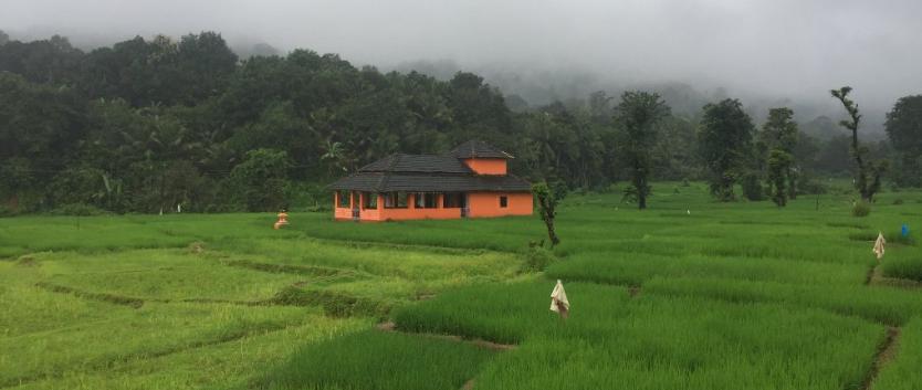 Mangal Farm XII.png
