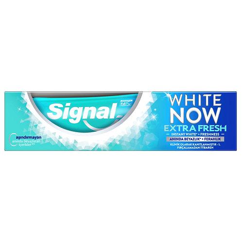 Signal White Now Ice Cool Mint Diş Macunu 75 Ml