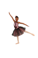 arabesque IMG_5295_clipped_rev_1.png