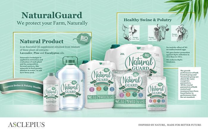 Direct-E-mail-Natural-Guard-2.jpg