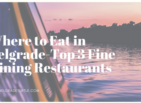 Where to Eat in Belgrade-Top 3 Fine Dining Restaurants