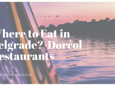Where to Eat in Belgrade- Dorćol Restaurants
