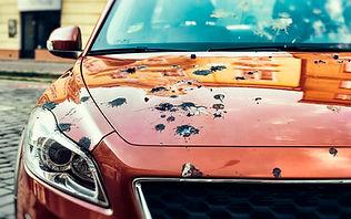 bird poop on car.jpg