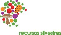 logotipo-topo.png
