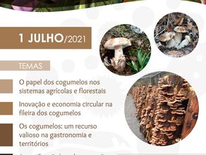 Webinar - A Fileira dos Cogumelos: o presente e o futuro