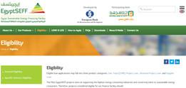 EgyptSEFF Website