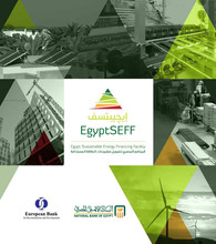 EgyptSEFF Brochure