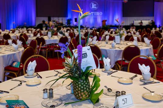 2019 Latino Chamber Noches Tropical (2 o