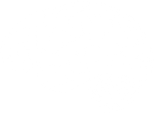 white-brain-20transparency.png