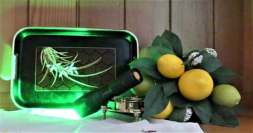 530nm Single-function Green Therapy Light