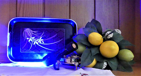 450nm Single-function Blue Therapy Light