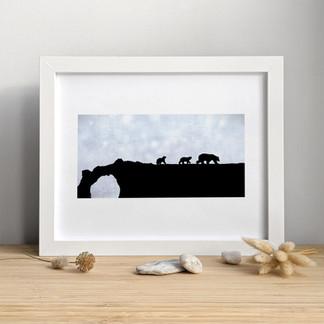 Les Ours Blancs ⎪ 15.00 $ +