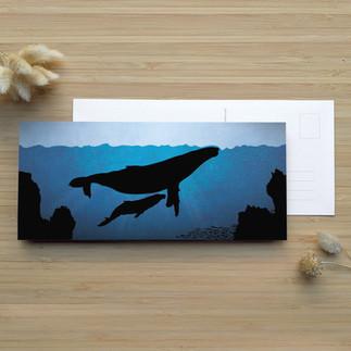 Les Baleines Bleues ⎪ 3.75 $