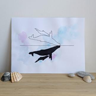Encre Baleines ⎪ $ 60.00