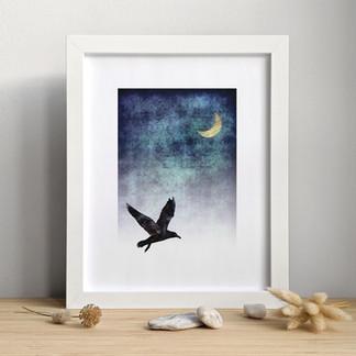 L'Oiseau ⎪ 15.00 $
