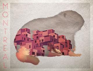 La Marmotte et Habitat 67