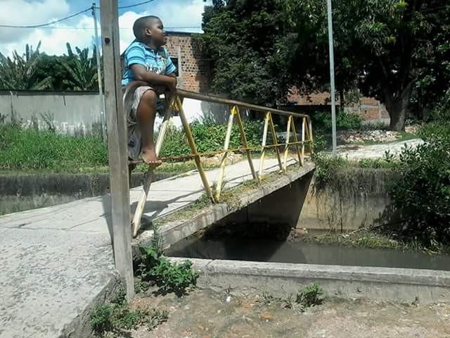 ponte cocisa luis paulo paripe 1.jpg 2.jpg 3.jpg
