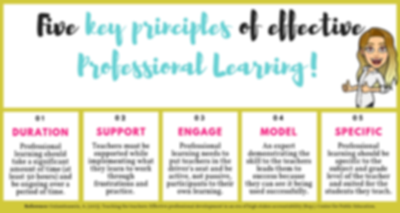 5 key principles of effective profession