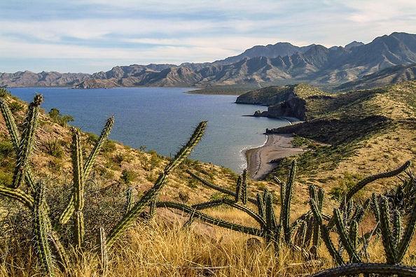 Baja.jpg