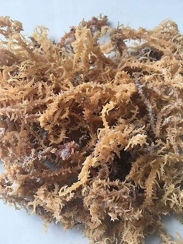 dry seaweed.jpeg