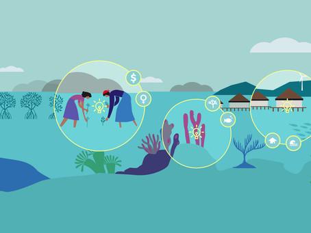 MARI Oceans named as a finalist in ORRAA's Ocean Resilience Innovation Challenge