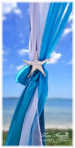 Starfish on Drapes