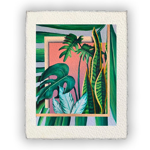 'Charlotte's Plants' Print