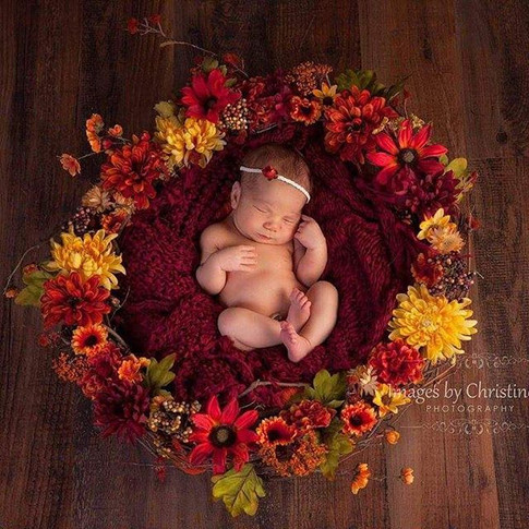 Omaha fall newborn pictures