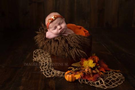 Fall scene newborn