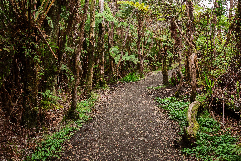 Hawaii Volcano Nat' Park