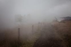Smoky road Hawaii Volcano