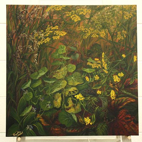 Autumn Undergrowth - Rhonda Crawford