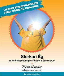 Sumarnámskeið2019-kubbur2.jpg