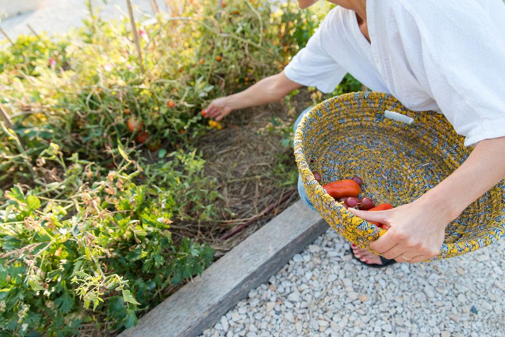Un jardin potager où vous pourrez ramasser vos légumes.