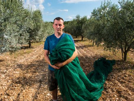 [Portrait] Eric Martin, le maître du fruité vert français