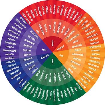 Feelings Chart color.jpg