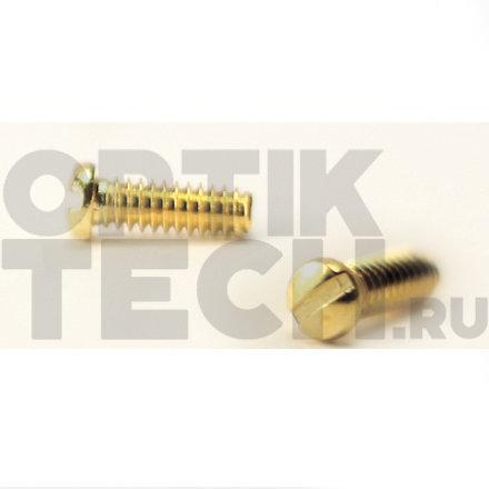 Винт 4,0х2,0х1,4 мм (золото), 100 шт.