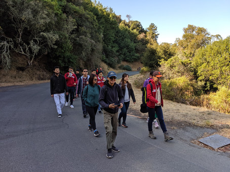 Hiking on Angel Island