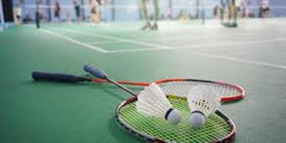 Mar Meetup: Badminton