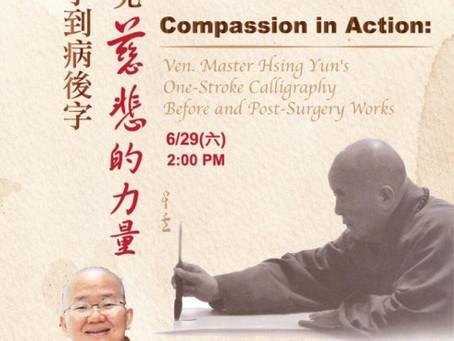 Recap: Compassion in Action