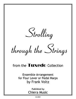 Strolling through the Strings - PDF