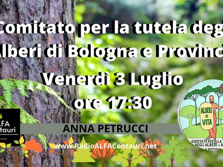 Approfondimento ambiente con il Comitato per la tutela degli alberi di Bologna e Provincia